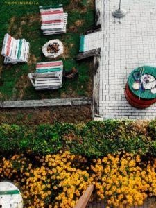 dvoriste lozanjske terase
